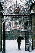 271A_FitzRandolph_Gates_In_Snow.jpg
