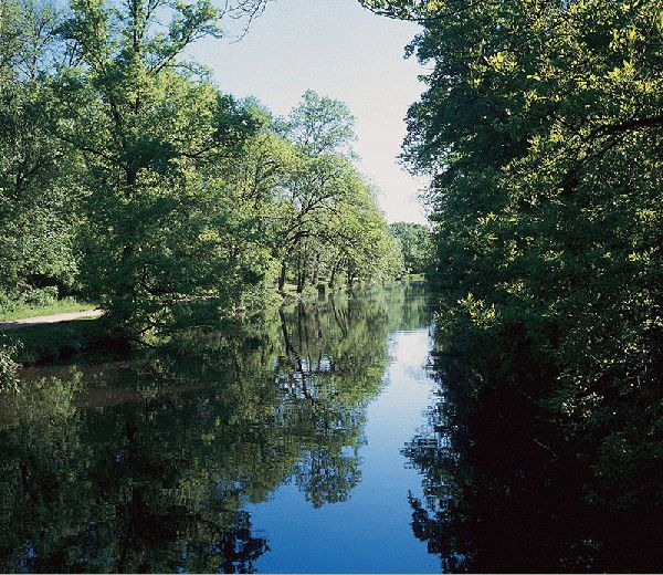 The Canal In Summer