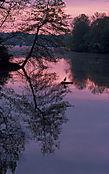 078_Lake_Carnegie.jpg