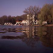 203-382.Jpg