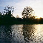 2P503-Springdale_Lake.jpg