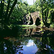 2P505-Kingston_Bridge.jpg