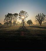 015_Princeton_Battlefield.jpg
